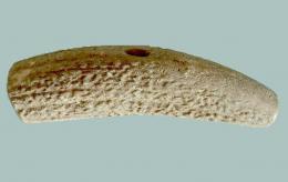 Оръдие на труда от еленов рог - Исторически музей град Провадия